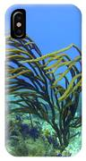 Deepwater Gorgonia Just Flowing In The Wind IPhone Case