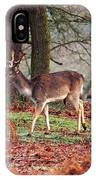 Deer Among The Ferns IPhone Case