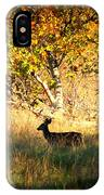 Deer Family In Sycamore Park IPhone Case