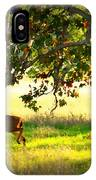 Deer In Autumn Meadow - Digital Painting IPhone Case