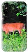 Deer In Overhang Of Trees IPhone Case