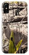 Deer In The Wood IPhone Case