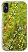 Deerweed In Rancho Santa Ana Botanic Gardens, Claremont-california IPhone Case