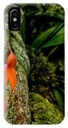 Delicate Orange IPhone Case