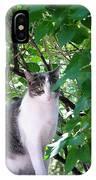 Demure Kitty IPhone Case