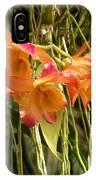 Dendrobium Orchids IPhone Case
