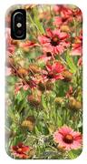 Desert Beauties IPhone Case