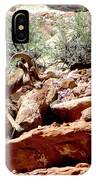 Desert Bighorn Ram Walking The Ledge IPhone Case