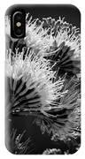 Desert Blooms IPhone Case