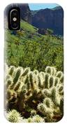 Desert Cholla 1 IPhone Case