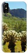 Desert Cholla 2 IPhone Case