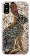 Desert Cottontail 1822 IPhone Case