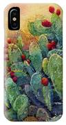 Desert Gems 2 IPhone Case