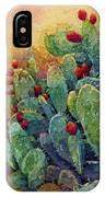 Desert Gems 2 IPhone X Case