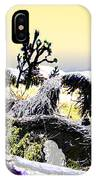 Desert Landscape - Joshua Tree National Monment IPhone Case
