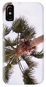 Desert Palm IPhone Case