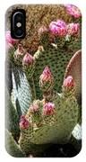 Desert Plants - Fuchsia Cactus Flowers IPhone Case