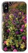 Desert Sand Verbena And Brown-eyed Primrose Below The Coyote Mountains California IPhone Case