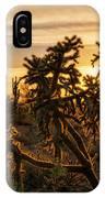 Desert Sunshine Shining Through  IPhone Case