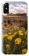 Desert Wildflowers In Spring IPhone Case