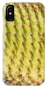 Detail Of Cactus In Galapagos IPhone Case