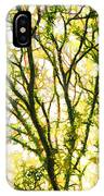 Detailed Tree Branches 1 IPhone Case