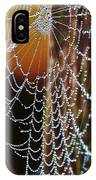 Dew Covered Web IPhone Case