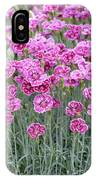 Dianthus Gold Dust Flowers IPhone Case