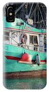 Diligence At French Creek IPhone Case