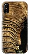 Disappearing Elephant IPhone Case