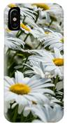 Dizzy With Daisies IPhone X Case