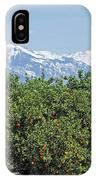 Dm6850-e Orange Grove And The Sierra Nevada Ca IPhone Case