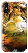 Do-00268 Trees On Water In Avoca Estuary IPhone Case