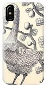 Dodo Bird Rodriguez Solitaire, Extinct IPhone Case