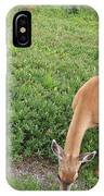 Doe IPhone Case