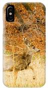 Doe High Stepping On Bald Mountain IPhone Case