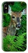 Doe In The Woods IPhone Case