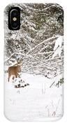 Doe In Winter Snow  IPhone Case