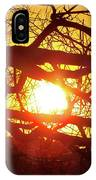 Dog Days Of Summer IPhone Case