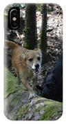 Dog On A Log IPhone Case