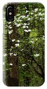 Dogwood Blooming In Forest IPhone Case