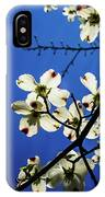 Dogwood In The Sky #2 IPhone Case