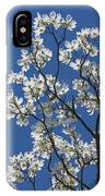 Dogwood Tree In Spring IPhone Case