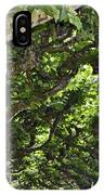 Dome Of Trees IPhone Case