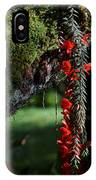 Donkey Tail Blossoms IPhone Case