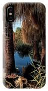 Dos Palmas Oasis IPhone Case