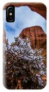 Double Arch Winter IPhone Case