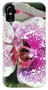 Double Beauty IPhone Case