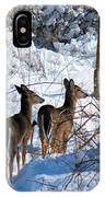 Double Look IPhone Case