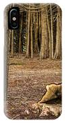 Down Tree IPhone Case